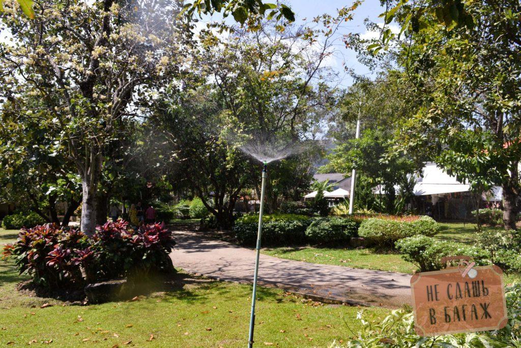 Внутри Ват Чалонга приятно просто погулять, ухоженные дорожки в тени деревьев, аккуратно подстриженный газон и множество цветов