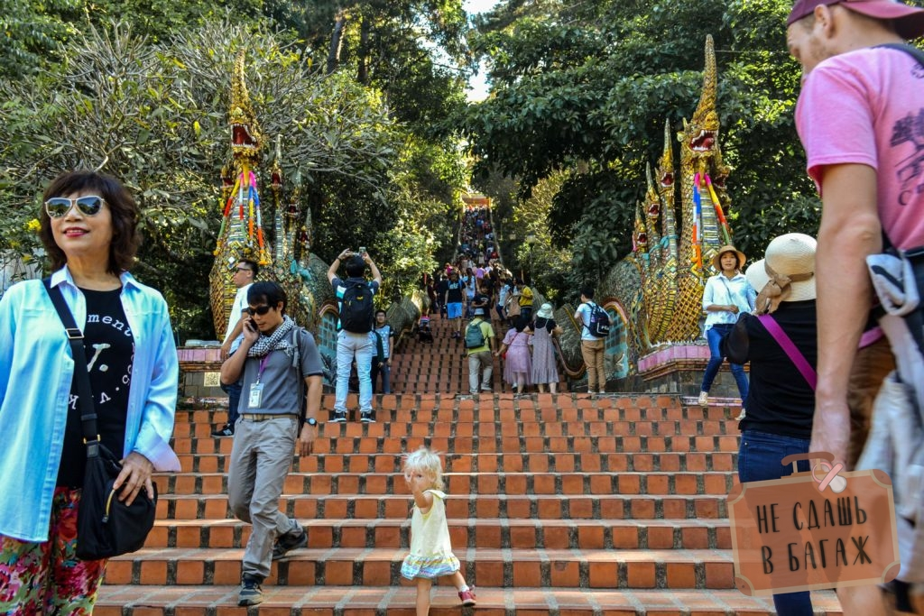 309 ступенек по лестнице до входа в храм Дой Сутхеп