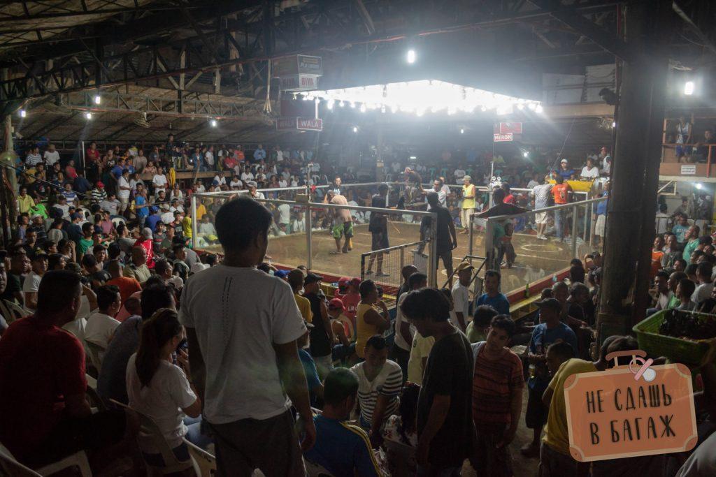Петушиные бои в Кадис Сити, Филиппины