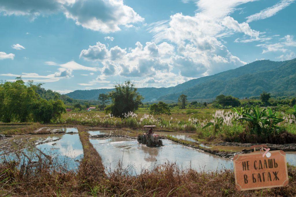 Трактор на рисовых полях