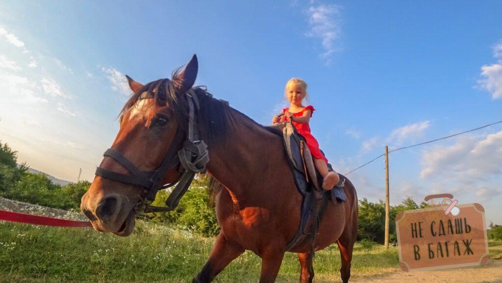 Езда на лошадях Даховская